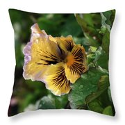 Blossoms And Waterdrops  Throw Pillow