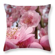 Blossoms Art Print Pink Spring Blossom Baslee Troutman Throw Pillow