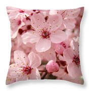 Blossoms Art Prints 63 Pink Blossoms Spring Tree Blossoms Throw Pillow