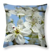 Blossoms Art Prints Whtie Spring Tree Blossoms Blue Sky Baslee Throw Pillow