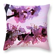 Blossoms At Sunset Throw Pillow