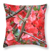 Blossoms Branches And Thorns Throw Pillow