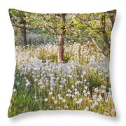 Blossoms Growing In A Fruit Orchard In Throw Pillow