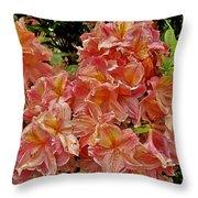 Blossoms In A Summer Shower Throw Pillow