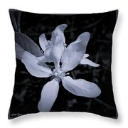 Blossoms In Black And White Throw Pillow