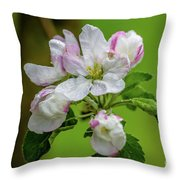 Blossoms In The Rain Throw Pillow