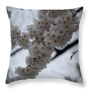 Blossoms Of Dc Throw Pillow