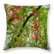 Blossoms Of Spring Time Throw Pillow