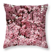 Blossoms Pink Tree Blossoms Giclee Prints Baslee Troutman Throw Pillow