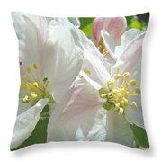 Blossoms Spring Apple Tree Art Prints Baslee Troutman Throw Pillow