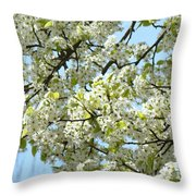 Blossoms Whtie Tree Blossoms 29 Nature Art Prints Spring Art Throw Pillow