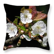 Blosson Standout Throw Pillow