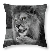 Blow You A Kiss  Black And White  T O C Throw Pillow