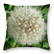 Blowball 1 Throw Pillow