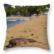 Blowfish Offshore  Throw Pillow