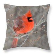 Blowing Snow Cardinal Throw Pillow