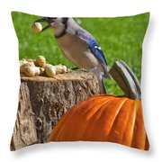 Blu Goes Nuts Throw Pillow
