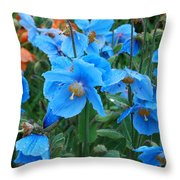 Blue After The Rain Throw Pillow