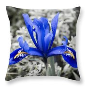 Blue Along Throw Pillow