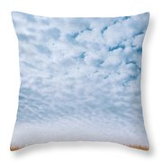 Blue And Amber Throw Pillow