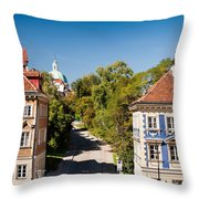 Blue And Brown Ornamental Walls Throw Pillow