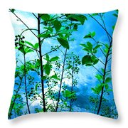 Nature's Gifts Of Blue And Green Throw Pillow