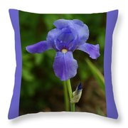 Blue And New Throw Pillow
