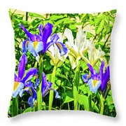 Blue And White Iris Throw Pillow