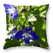 Blue And White Lobelia Throw Pillow