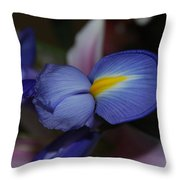 Blue And Yellow Fun Throw Pillow