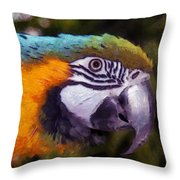 Blue-and-yellow Macaw Throw Pillow