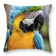Blue And Yellow Macaw Vertical Throw Pillow