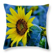 Blue And Yellow Throw Pillow