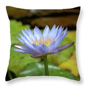 Blue And Yellow Water Lily Throw Pillow