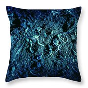 Blue Archaeology Throw Pillow