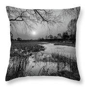 Blue Bayou Bw Throw Pillow