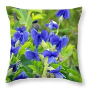 Blue Beauties Throw Pillow