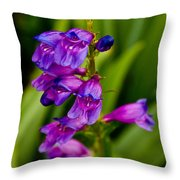 Blue Bells Wild Flower Throw Pillow