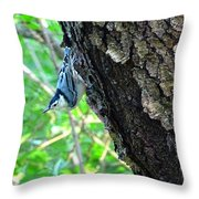 Blue Bird 2 Throw Pillow