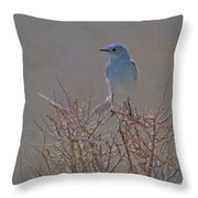 Blue Bird Colored Pencil Throw Pillow