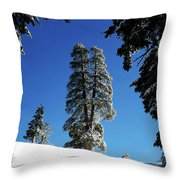 Blue Bird Day Throw Pillow