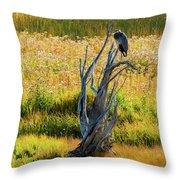 Blue Bird Not Quite Stumped Throw Pillow