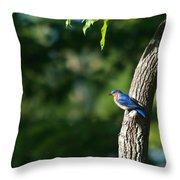 Blue Bird Perched Throw Pillow