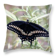 Blue Black Swallowtail Throw Pillow