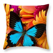 Blue Butterfly On Brightly Colored Flowers Throw Pillow