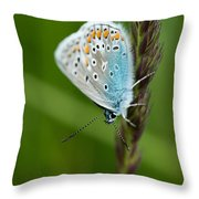 Blue Butterfly On Grass Throw Pillow