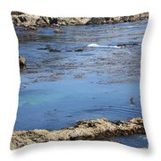 Blue California Bay Throw Pillow