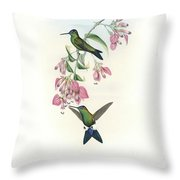 Blue-capped Puffleg Hummingbird Eriocnemis Glaucopoides Throw Pillow by John and Elizabeth Gould