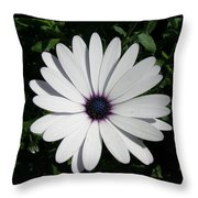 Blue Center Daisy Throw Pillow