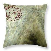 Blue Cheese Wheel Throw Pillow